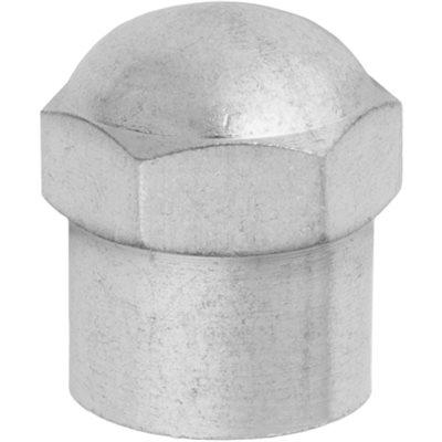 PLASTIC VALVE CAP W/ CHROME FINISH & SEAL